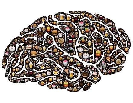 brain-954821__340.jpg